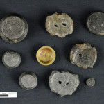 Weight and seals of goods brought to light in the King's warehouses